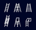 Free Ladder Vector