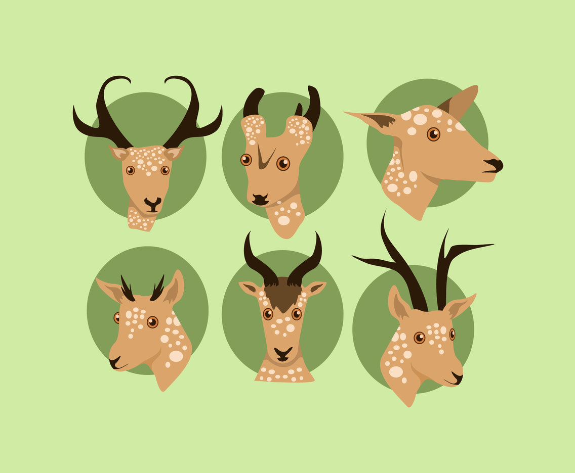 Oryx Heads Vector