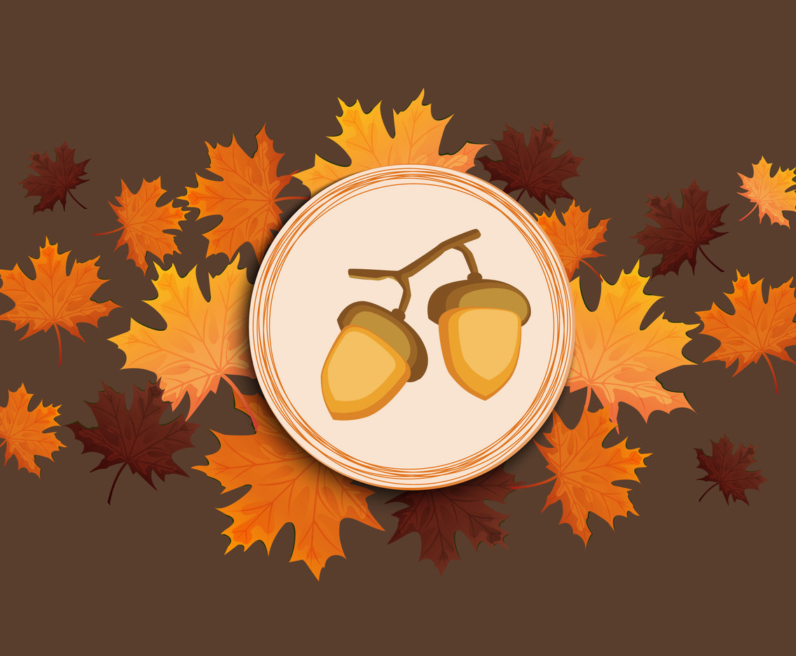 Acorn background vector illustration