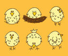 Little Chicken Nest Vector