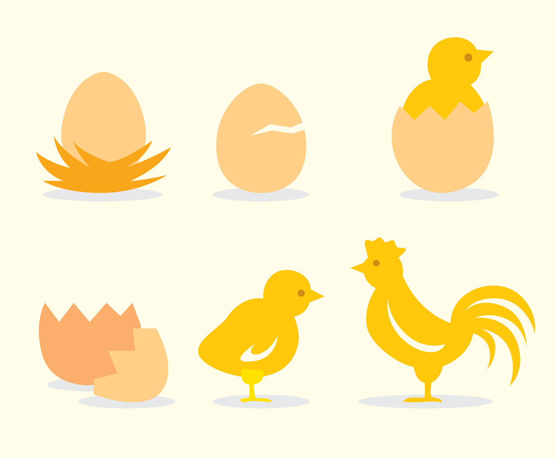 Egg Nest Chicken Vector