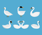 White Swan Vector Set