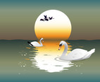 Swan illustration background vector
