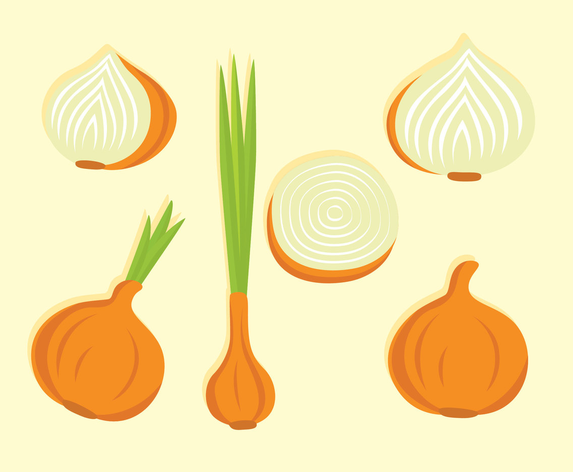 Nice Onion Vector Set