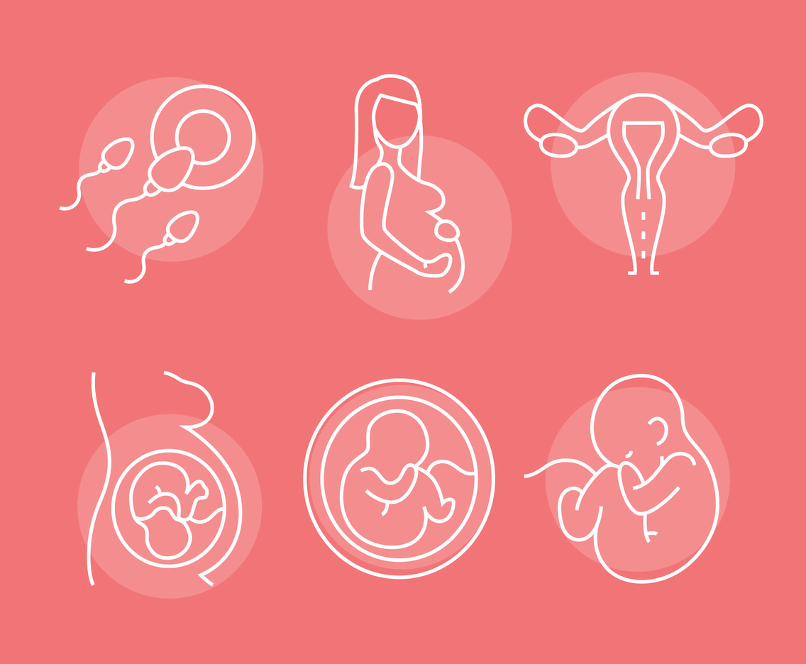 Pregnant Line Icons Vector Sets