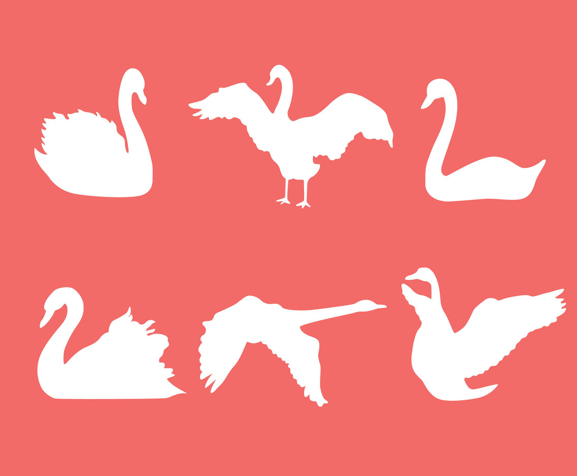 White Swan Silhouette Vector