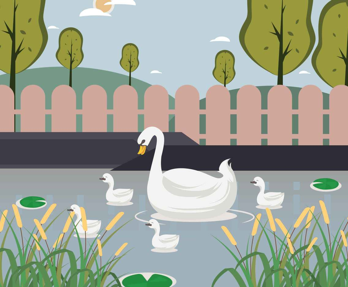 Free Swan and Baby Swans Illustration