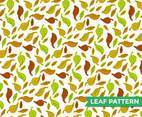 Leaf Pattern Illustration Vector