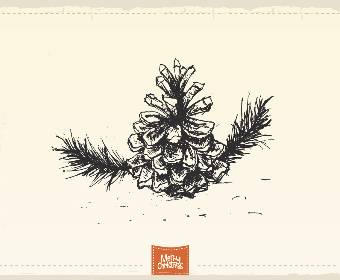Antique Pine Cone Sketch Vector