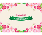 Beautiful Flowers Background
