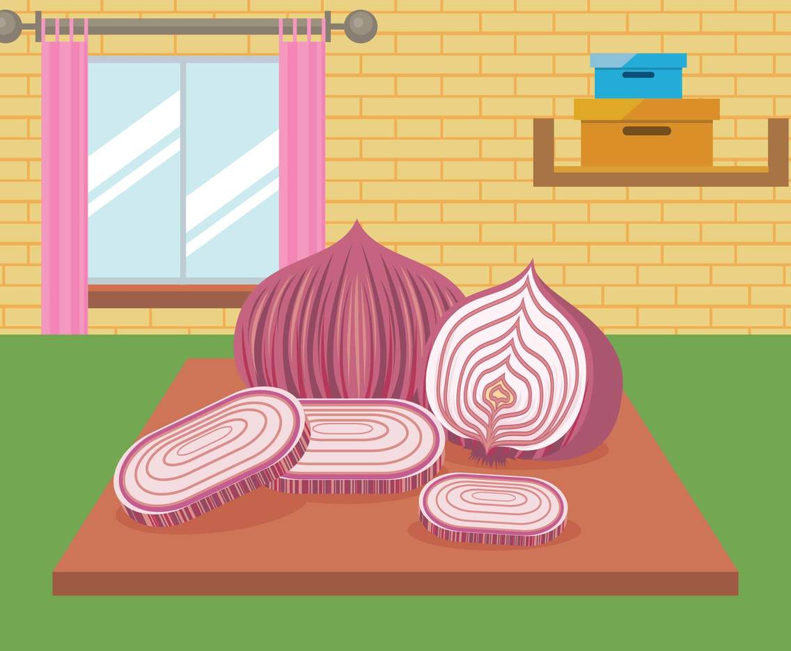 Free Slice Red Onion On Top Table Illustration