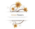Brown Flowers