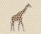 Giraffe Background