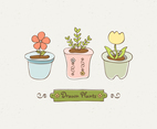 Cute Drawn Plants