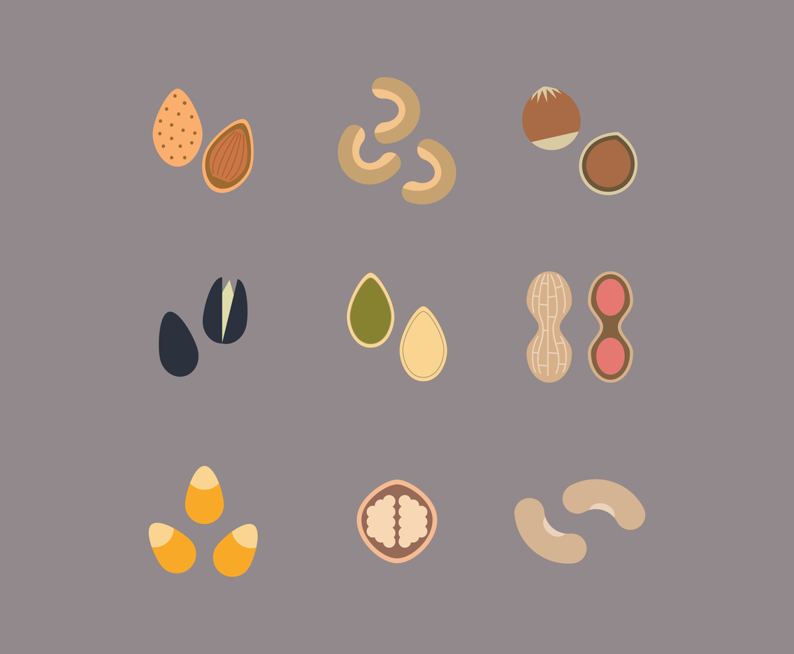 Flat Icon Nuts