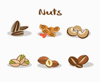Various Nuts Vector
