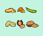 Nuts Illustration Vector