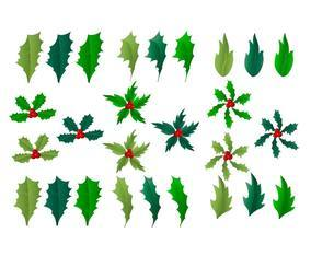 Holly Leaf Element Vectors