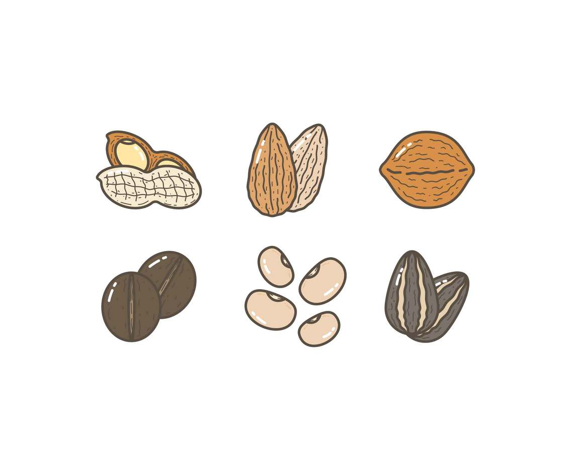 Free Edible-Seed Vectors
