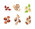 Delicious Nuts Vector Set