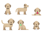 Cute Labrador Vector
