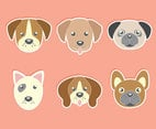 Cute Dog Face Collection Vector