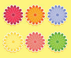 Coloreful Chrysanthemum Flowers Vector