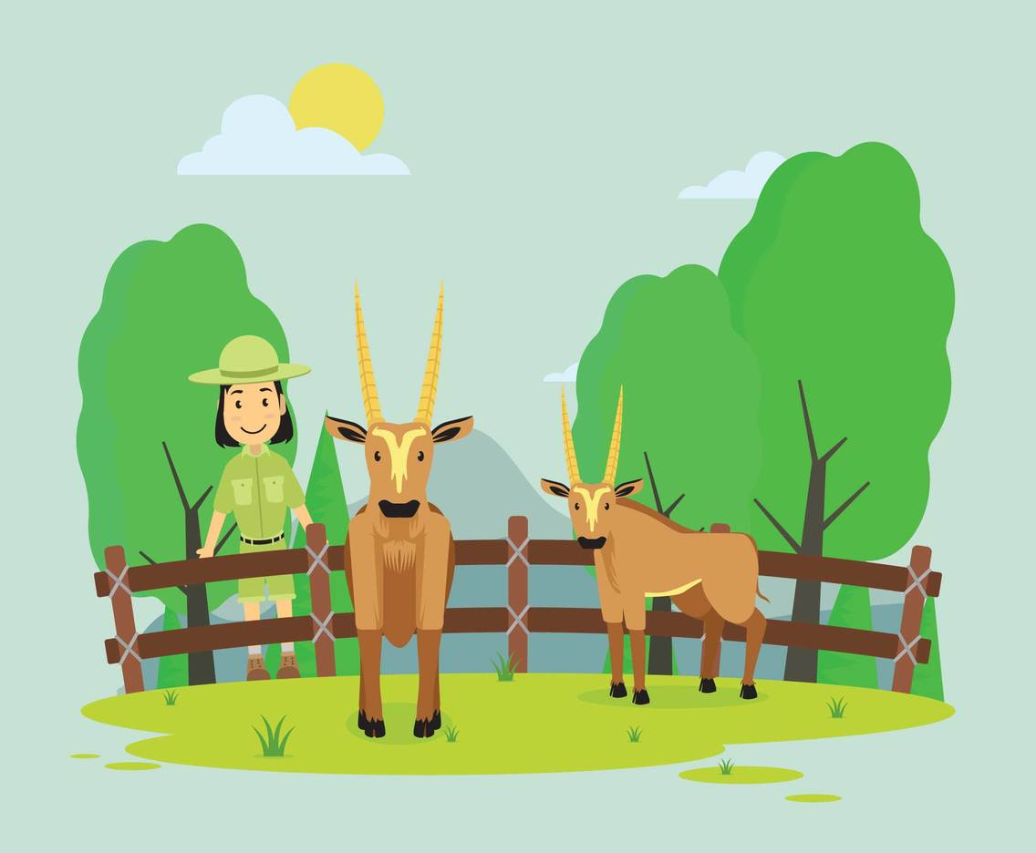 Oryx in Zoo Illustration