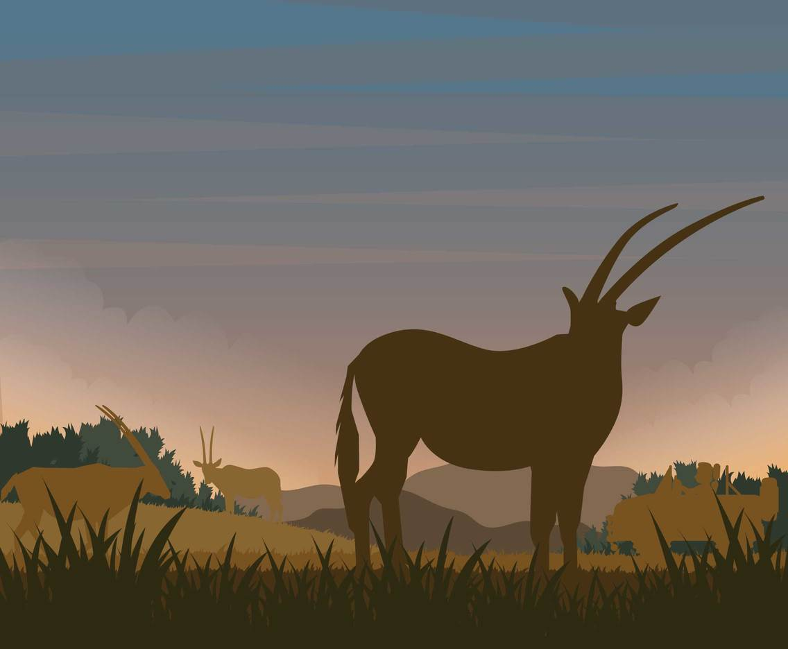 Free Oryx Silhouette Illustration