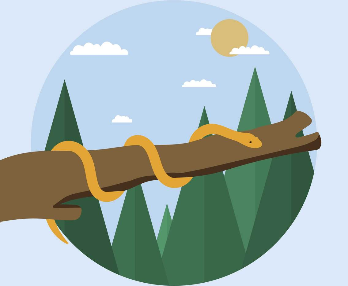 Free Snake On Tree Illustration