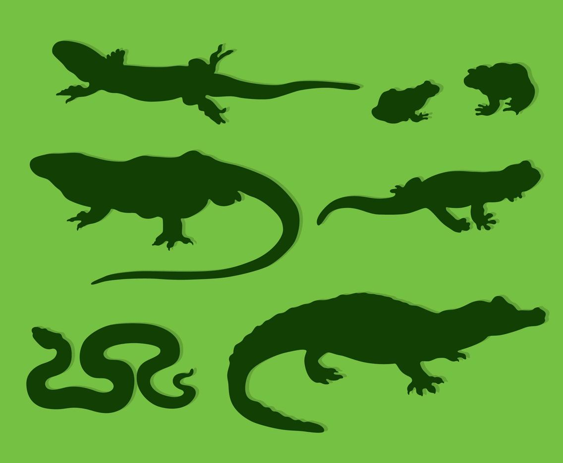 Reptile Silhouette Collection Vector