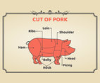 Meat Cuts of Pork Vector