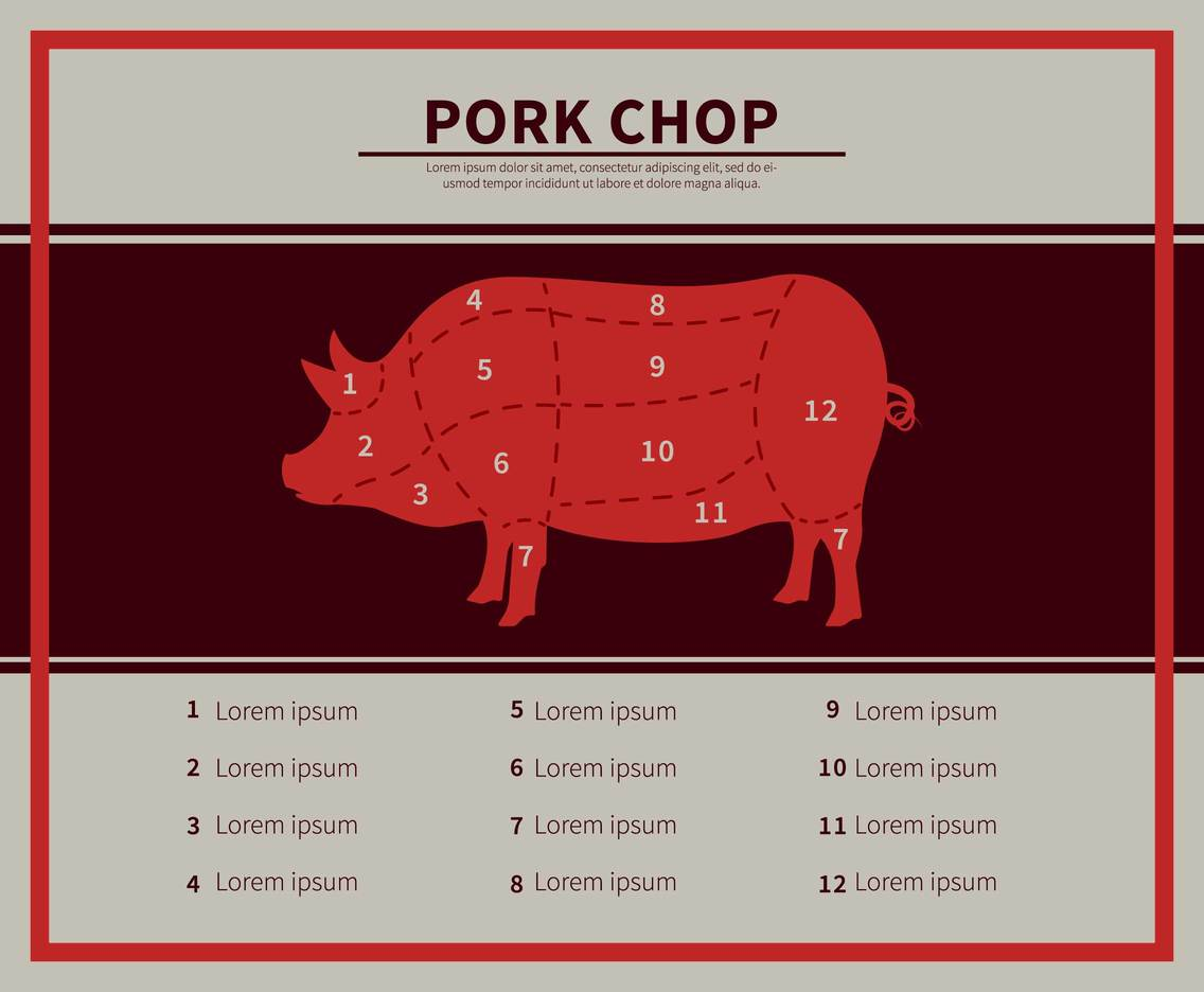 Free Pork Chop Illustration