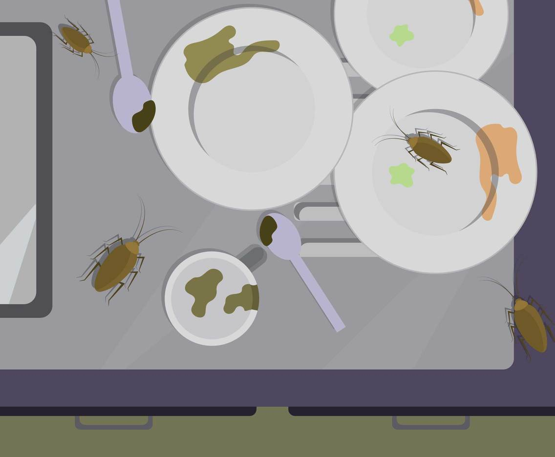 Free Cockroaches on Dirty Plates Illustration