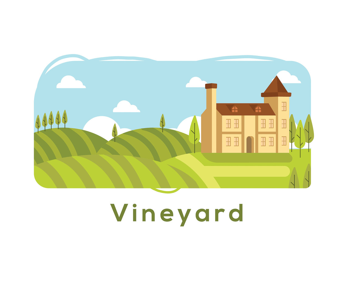 Vineyard Illustration Vector