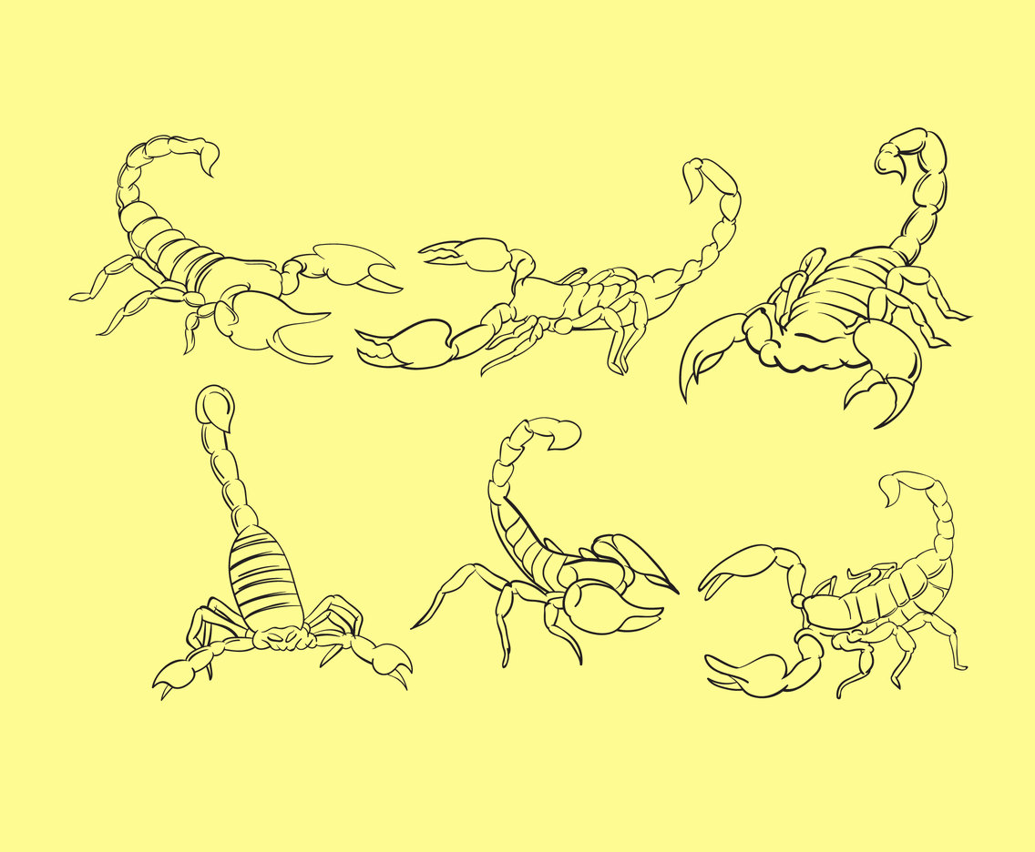 Outlined Scorpions Vector