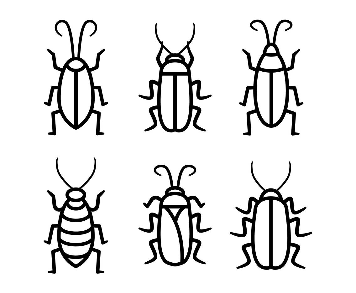 Cockroach vector set
