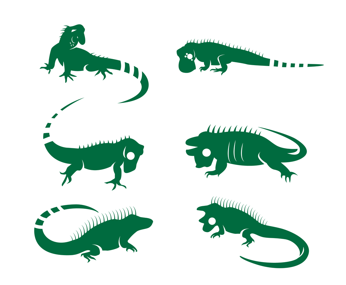 Green Iguana Silhouette Vector
