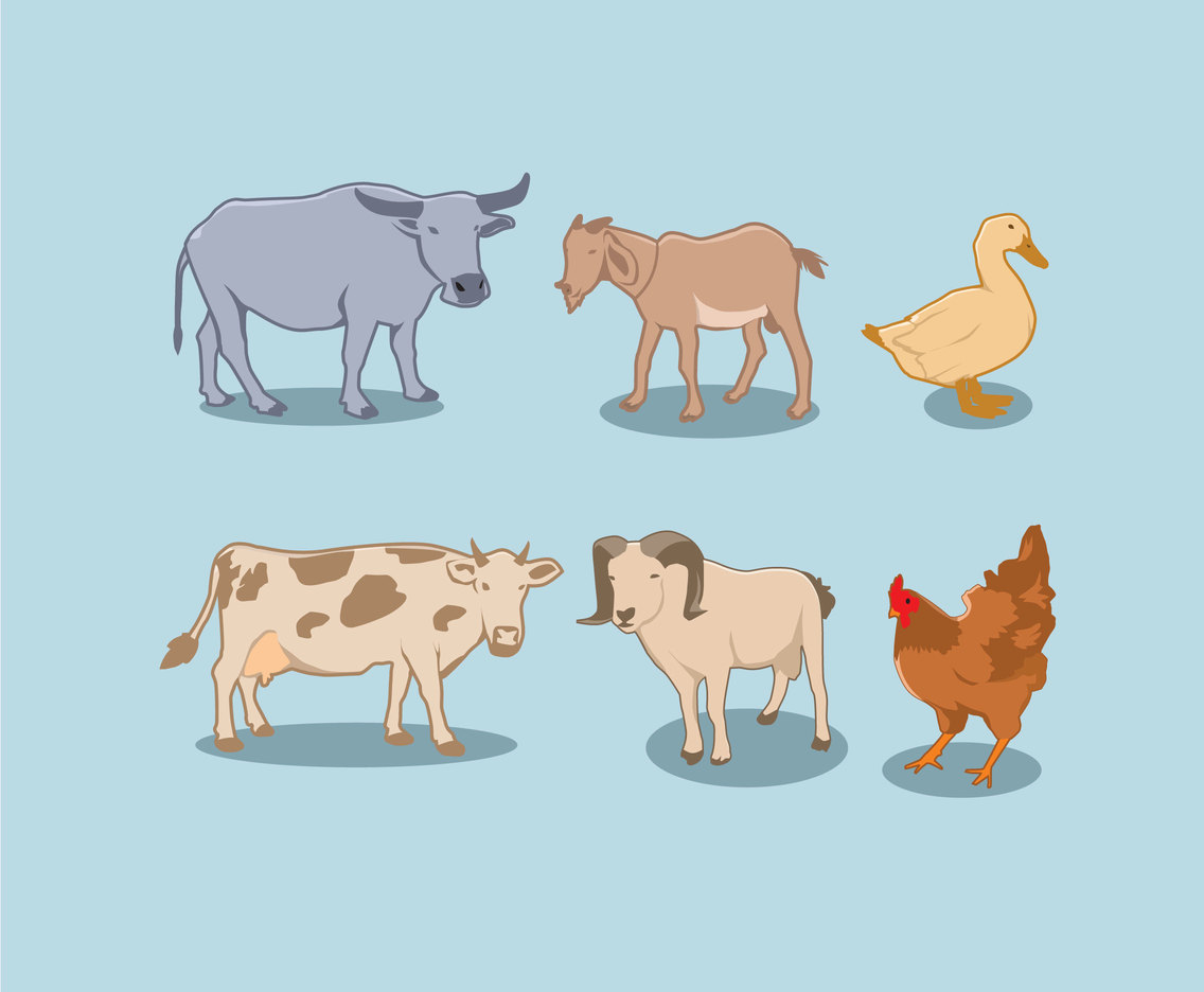Various Farm Animals Vector