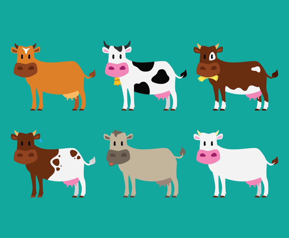 Illustration Cattle Set