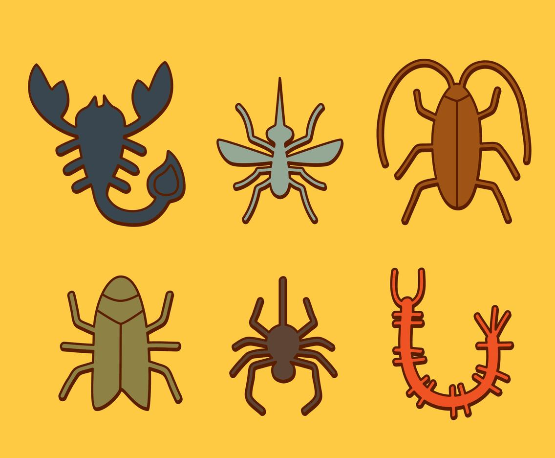 Insect Icons Collection Vector