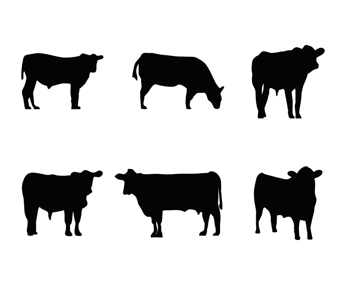 Cattle Silhouette Vector