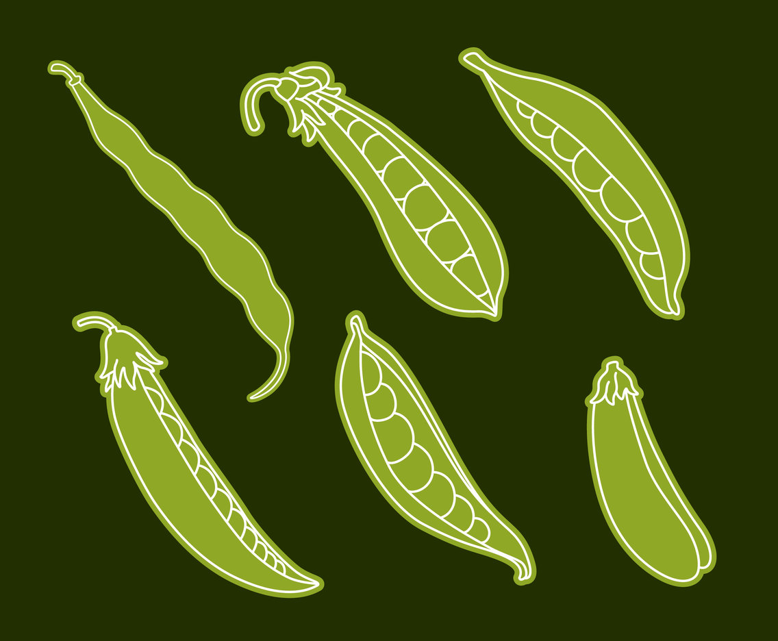 Peas Collection Vector