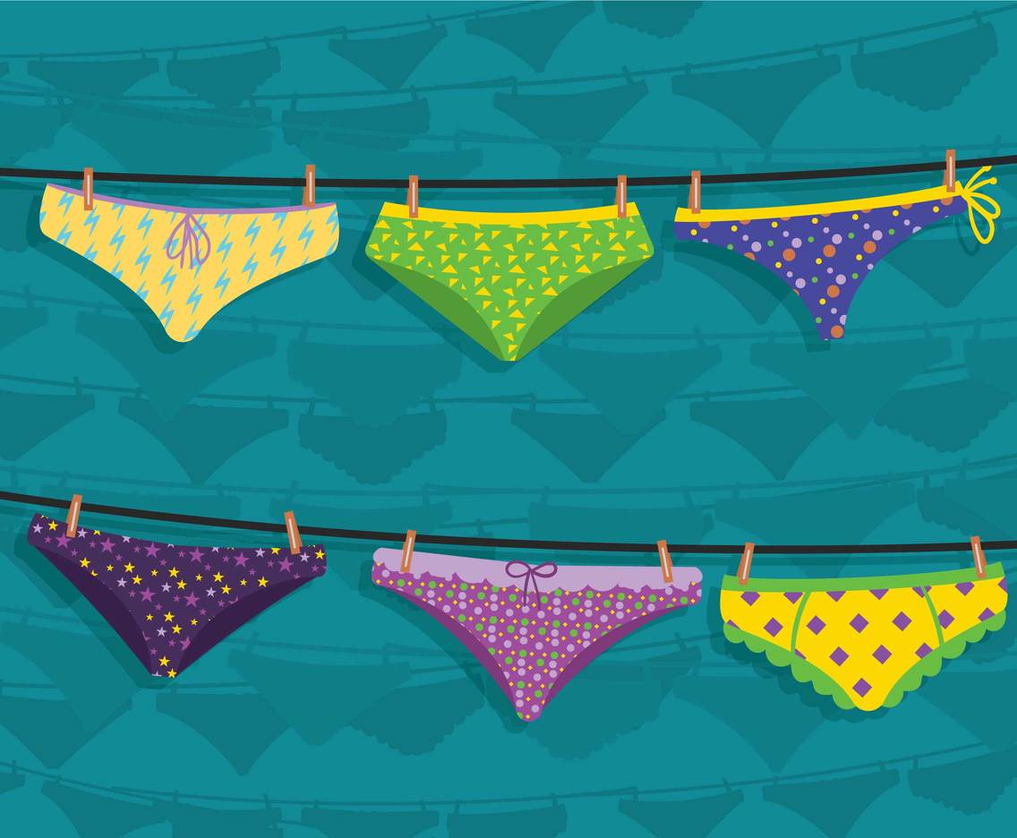 Panties vector set