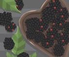 Blackberry Fruit Vector