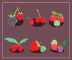 Berries Fruit Vector