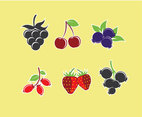 Berries Illustration Vector
