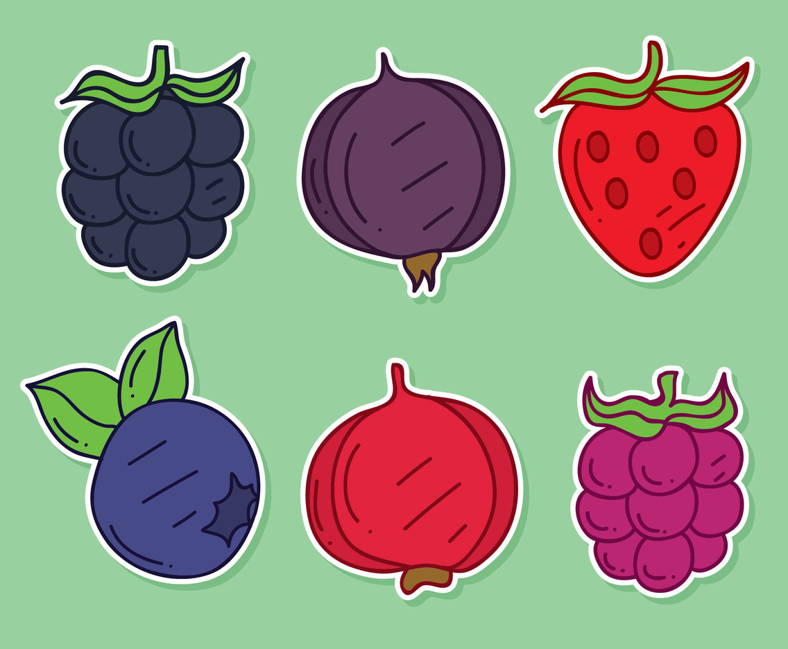 Nice Hand Drawn Berries Fruit Vector