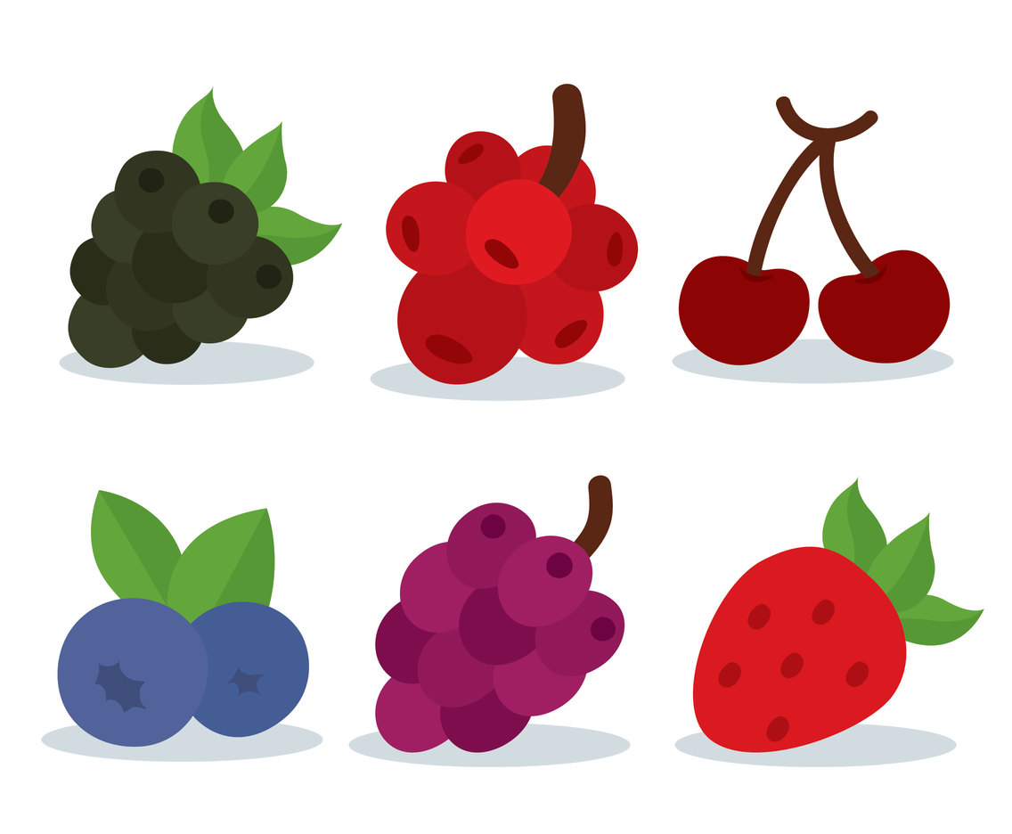 Berries Fruit Collection On White Vector