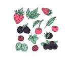 Doodles Of Berries